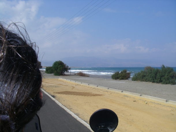 Wild and Free Motorcycle Ride
