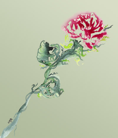 single-rose-website
