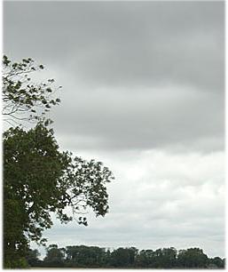 grey sky copy